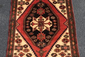 NEW 4×5 Persian Hamadan Handknotted Area Rug